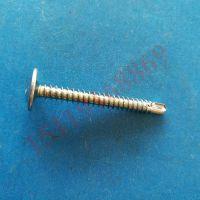 大扁头钻尾螺丝钉 中山自攻螺丝钉定做
