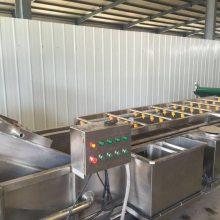 草莓加工流水线厂家 清洗漂烫设备