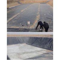 沼气设备专业生产厂商服务热线15966187888