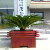 户外防腐木花盆街道组合绿化花盆种植箱