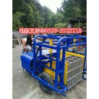厂家专业生产免烧砖电瓶叉砖车运砖车