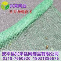 绿色盖土网图片 兰花遮阳网 遮阳网使用