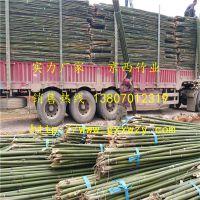 大量供应绑扶枸杞树苗用的竹杆 青海格尔木枸杞基地专用