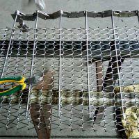 链条式清洗网带供应商 耐腐蚀输送网带乾德 质量高