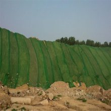 防尘塑料网 绿化防尘盖土网厂家 盖土网价格