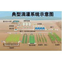 智慧农业水肥一体化滴灌系统