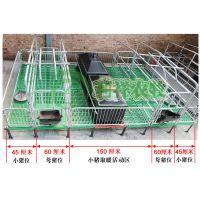 利祥养猪设备厂猪用分娩床尺寸齐全优质的母猪产床
