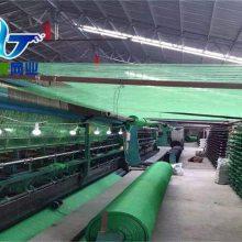 许昌绿色盖土网 绿化防尘网 3针绿色盖土防尘网