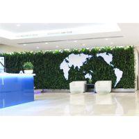 惠州市假植物墙 高仿真绿植 植物墙假植 装饰风景区制作仿真生态园林植被