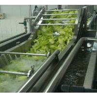 萝卜条清洗机,芹菜清洗机,韭菜清洗机,汇康净菜加工设备