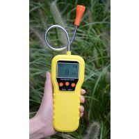 家庭用便携式煤气测漏仪,煤气测漏仪