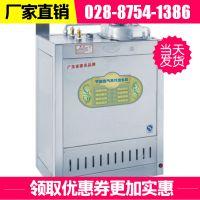 厂家直销燃气锅炉天然气蒸汽发生器