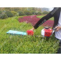 花卉剪树使用绿篱机 环卫绿化汽油绿篱机 润众