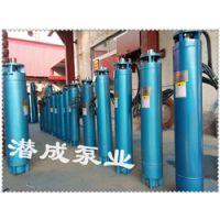 大功率热水潜水泵电机如何选择