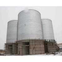 山东聊城正阳专业设计安装螺旋卷板仓