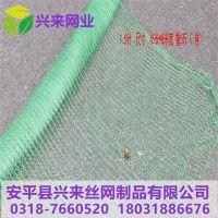 江苏温州盖土网 唐山遮阳网盖土网厂 防尘网洛阳厂家
