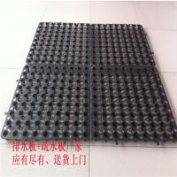 蓄排水板专业生产厂家