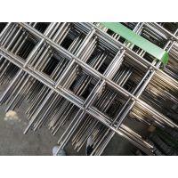 【环航网业】供应304不锈钢电焊网1寸孔养殖网