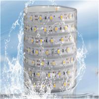 LED软灯条 3528套管防水灯带 七彩灯带遥控变色RGB 60灯/米