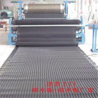 供应hdpe排水板=广西凹凸型排水板(图)