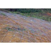 主动防护网、安平添来(图)、spider主动防护网