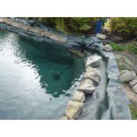 HDPE聚乙烯土工膜,水产养殖防渗膜 藕池鱼塘复合土工膜