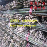 供应密植苹果园竹杆 绑扶苹果树苗用的4米小竹杆子