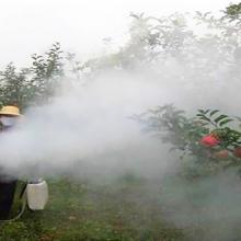 新年开卖汽油弥雾机 旱地打药机 烟雾喷雾机
