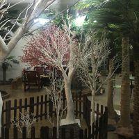 仿真植物塑料干树枝假树杆枯树枝大树树枝婚庆家居影楼装饰道具