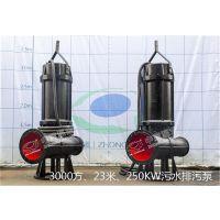 中蓝75KW/110KW/55KW污水泵现货供应