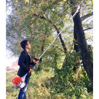 果树修剪机 果树高枝修剪用高枝锯