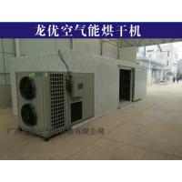 龙优LY-290RD黄瓜烘干机图片