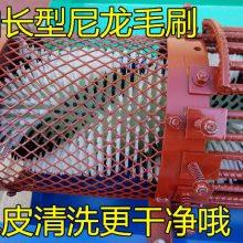 自动青皮核桃扒皮机 脱壳机的方法 自动扒皮清洗机