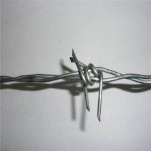 防护刺钢丝 刺绳复合立柱 防爬铁刺