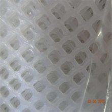 家禽塑料网 塑料养殖网批发 果园养殖网