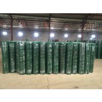 现货供应230#东北养鸡围栏网 养殖厂隔离荷兰网 养殖钢丝网