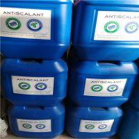 净水设备专用美国进口蓝旗阻垢剂 河南阻垢剂总代理