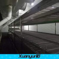陕西网带饺子速冻隧道 小型速冻机公司