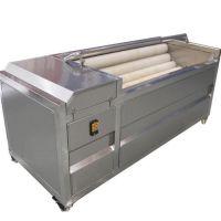 马铃薯清洗机,鑫利达食品机械(图),马铃薯清洗设备