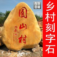 良好园林出售湖北黄腊石,湖北公园刻字石,黄色石头