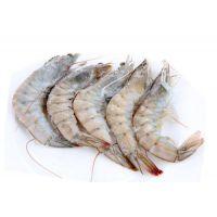 冷冻南美白对虾价格 冰鲜南美对虾货源