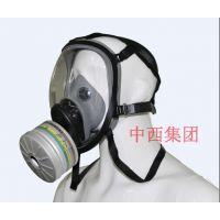 中西dyp 防毒面具 型号:VE98-VERF-X库号:M16991