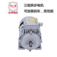 UV涂装生产线设备用三相交流电机,异步电机380V,台湾永坤品牌