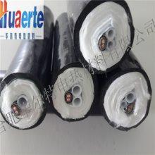 华尔特牌伴热防腐蚀一体化取样管HL-D45-A2¢8-40-Z-N/PTFE