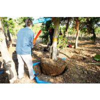 石榴树移栽起树机 苗圃园林大马力起树机 柿子树链条式移栽机