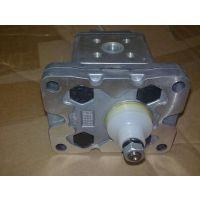 意大利Marzocchi马祖奇齿轮泵ALP2-D-25 马祖奇GHP3A-D-30-FG齿轮泵