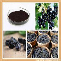 长期供应 食品级着色剂 黑加仑红 质量保证 量大价优