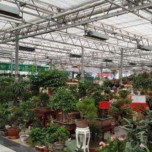 江苏|南京|无锡|徐州|常州|苏州|南通连栋智能玻璃温室大棚设计建造