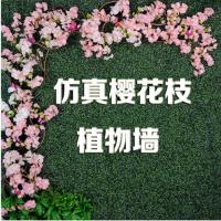 广州时康仿真植物墙,背景墙,绿植墙,外墙围栏装饰景观草坪,