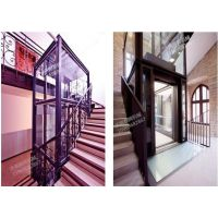 佛山泰辉厂家定制 平台式钢化玻璃轿厢室内外家用电梯